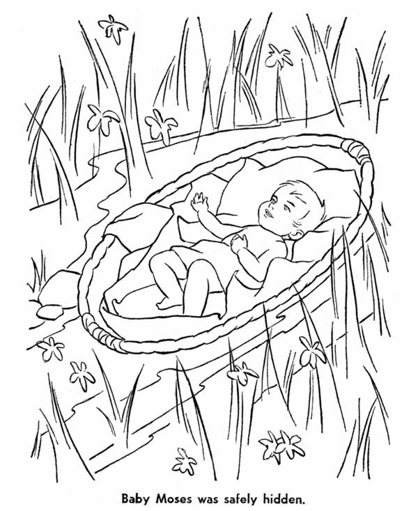 Baby Moses Safely Hidden From Pharaoh Army Coloring Page