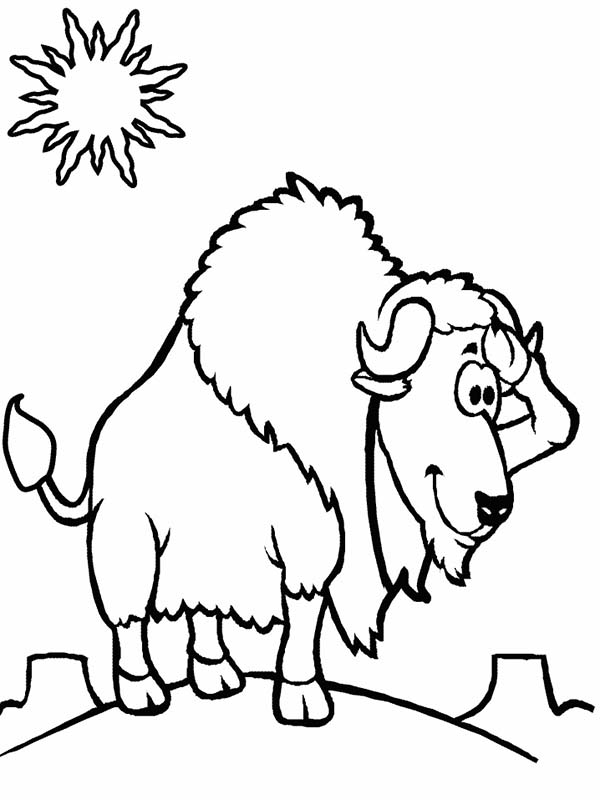 Bison Standing At Noon Coloring Page : Color Luna