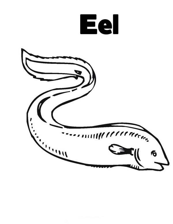 Eel Coloring Page For Kids : Color Luna