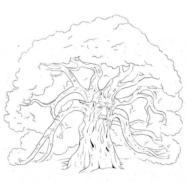 Forest Guard Oak Tree Coloring Page : Color Luna