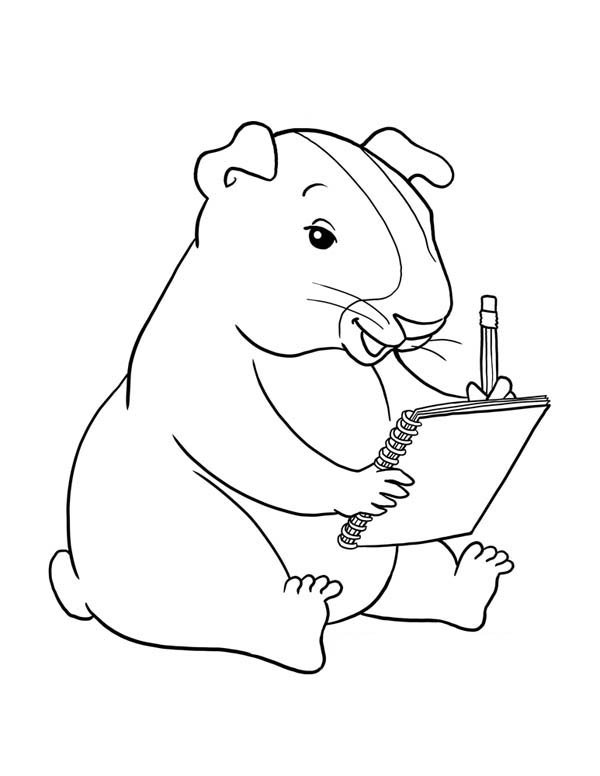 Guinea Pig Writing Coloring Page: Guinea Pig Writing