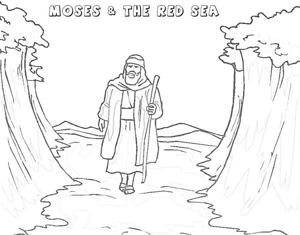 Moses Walking Through Red Sea Coloring Page : Color Luna
