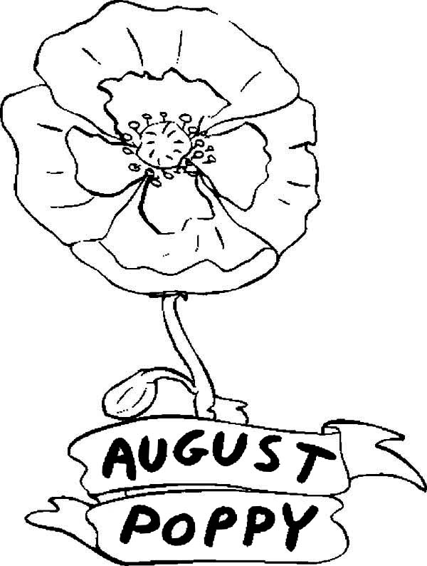 Poppy Flower In August Coloring Page : Color Luna