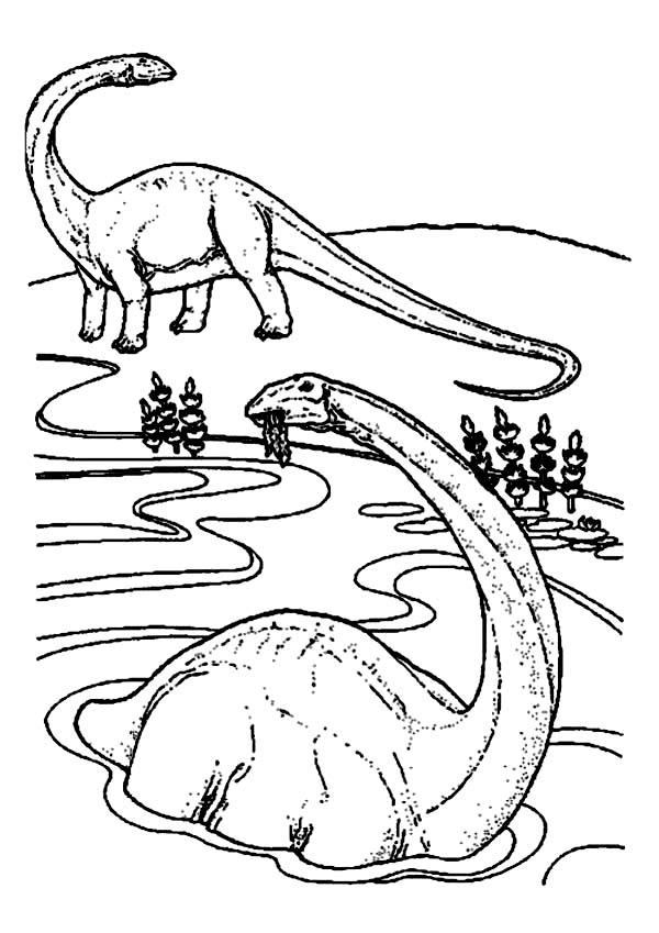 Brachiosaurus Is Swimming Coloring Page : Color Luna
