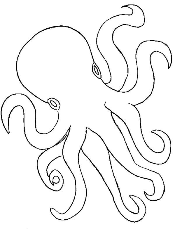 Octopus Outline Coloring Page : Color Luna