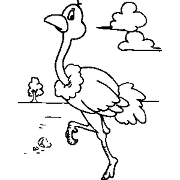 Ostrich Walking Around Coloring Page : Color Luna