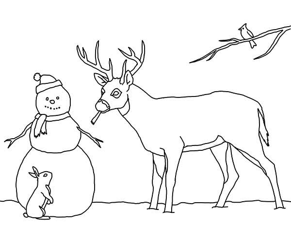Snowman And His Animal Friends Coloring Page : Color Luna