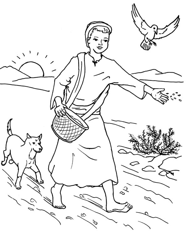 Farmer Scattered Seed Among Thorns In Parable Of The Sower