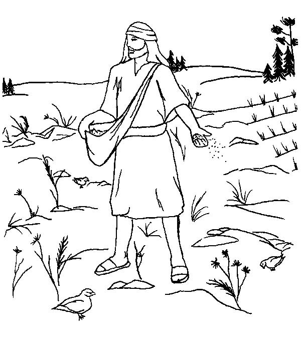 Land Where So Much Bush In Parable Of The Sower Coloring