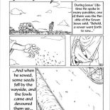 Parable Of The Sower Coloring Page For Kids : Color Luna