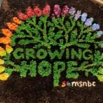 MSNBC – Seeds of Hope