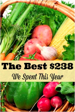 The Best $238 We Spent This Year