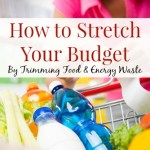 How to Stretch Your Budget by Trimming Everyday Waste