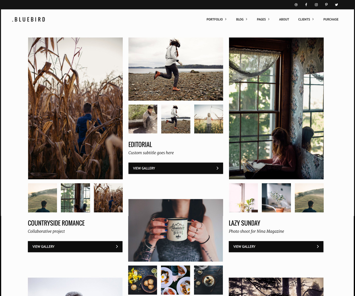 Bluebird Photography Portfolio WordPress Theme by Colormelon