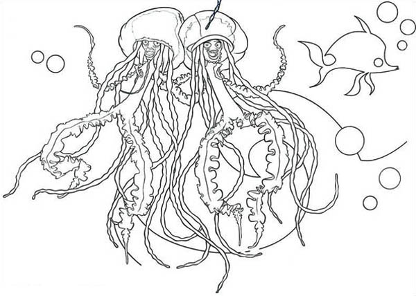 Singing Jellyfish Coloring Page For Kids Download Print Online Coloring Pages For Free Color Nimbus