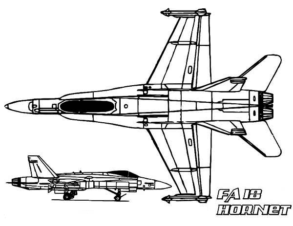 Hornet Printable Coloring Pages