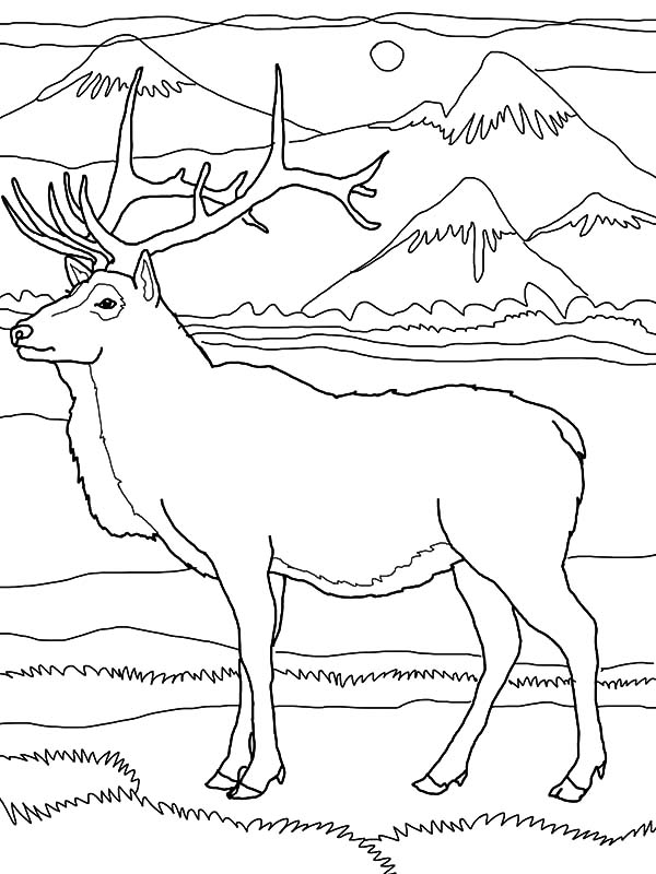 mountain coloring page # 38