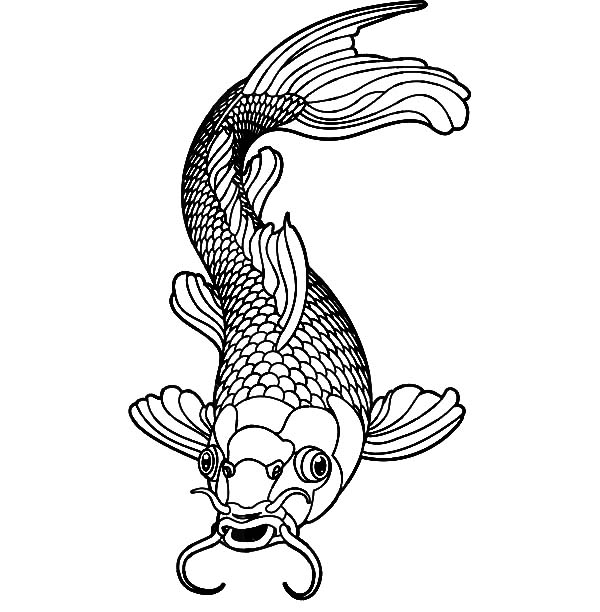 koi fish coloring pages # 7