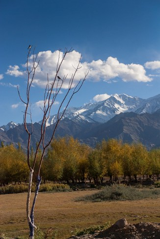 Picturesque scenery at Leh