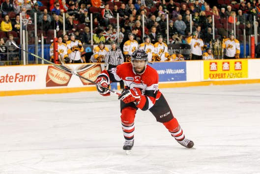 Taylor Davis went from walk-on to defensive standout for the OHL's Ottawa 67's (Photo/Valerie Wutti/Blitzenphotography.com).