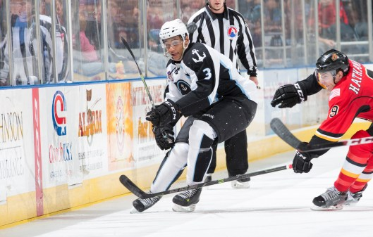 Nashville Predators 2013 draft pick Jonathan Diaby (left) working on improving his game with the AHL Milwaukee Admirals (Photo/Milwaukee Admirals).