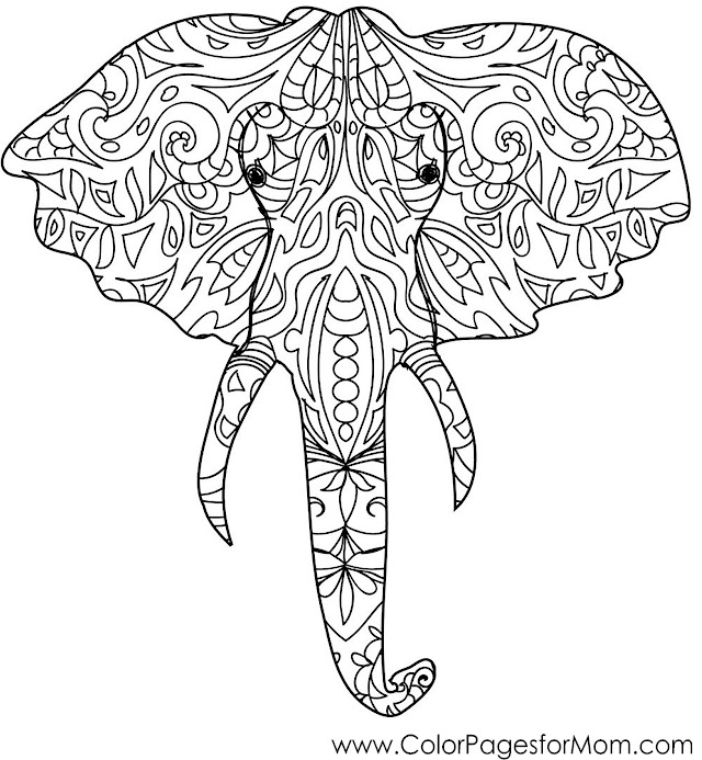 Animals 50 Advanced Coloring Page