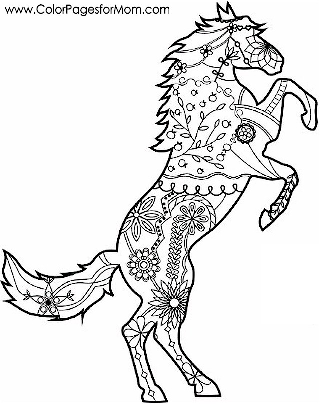 Animals 7 Advanced Coloring Page