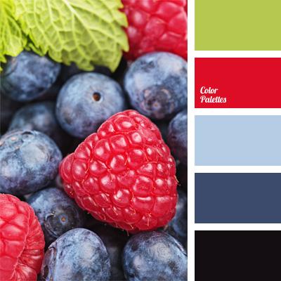 contrast blue and raspberry color  Color Palette Ideas