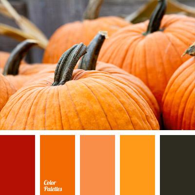 designers palettes  Color Palette Ideas