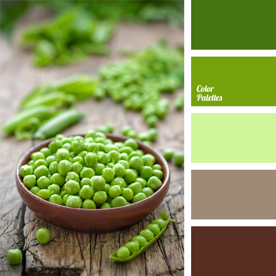 contrasting combination of green and brown  Color Palette Ideas