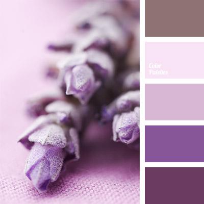 lavender color  Page 4 of 5  Color Palette Ideas