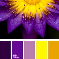 magenta | Color Palette Ideas
