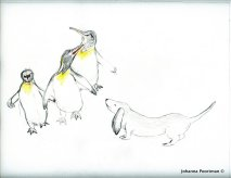Pup to Penguin