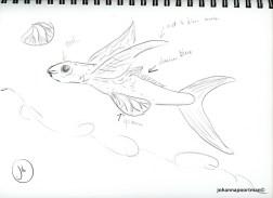 sketch fish005