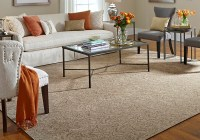 Living Room Accent Rugs - Frasesdeconquista.com