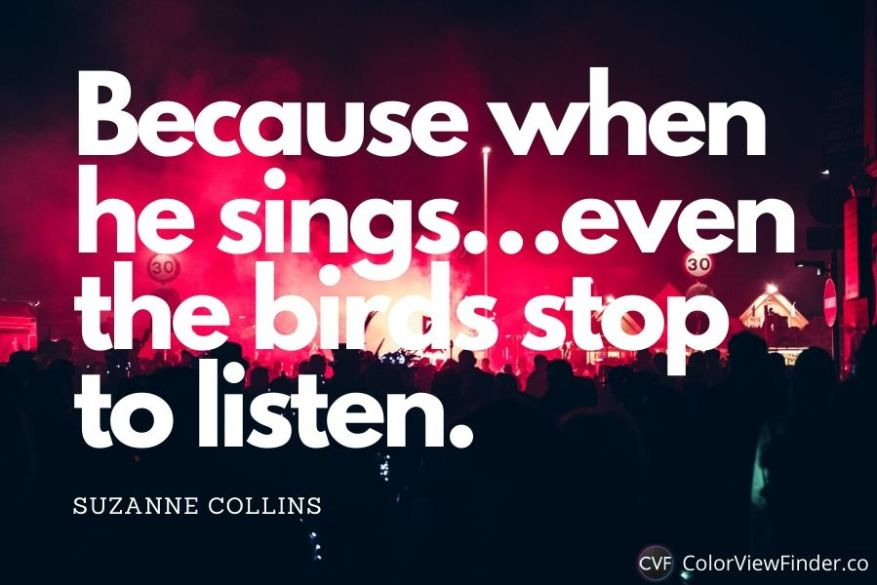Because when he sings…even the birds stop to listen.