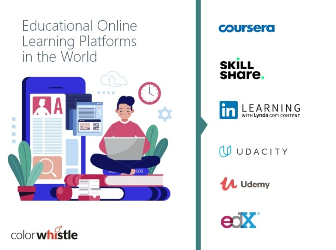 Top 6 Online Learning Platforms In The World Colorwhistle