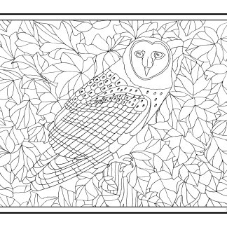 Birds, Animals and Wildlife Coloring Pages