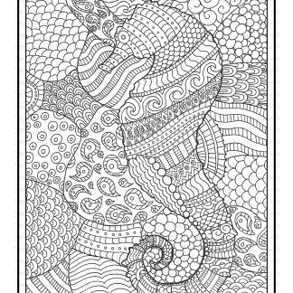 Seahorse Free Printable Coloring Page
