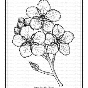 Forget Me Not Flower Coloring Page