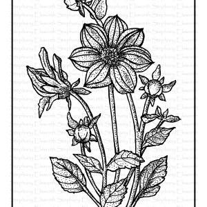 butterfly and flowers free coloring page