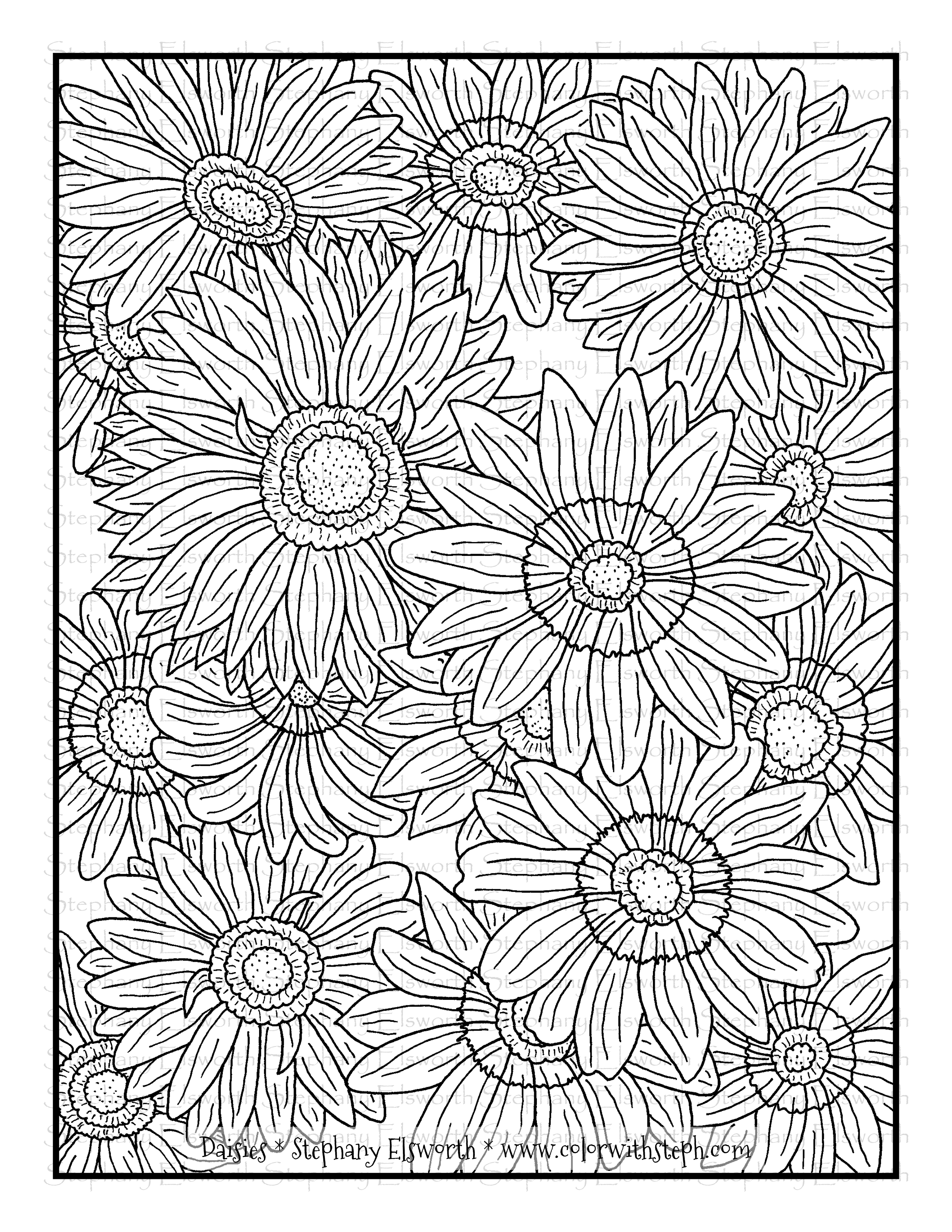 Daisy Flowers Free Coloring Page - Color with Steph