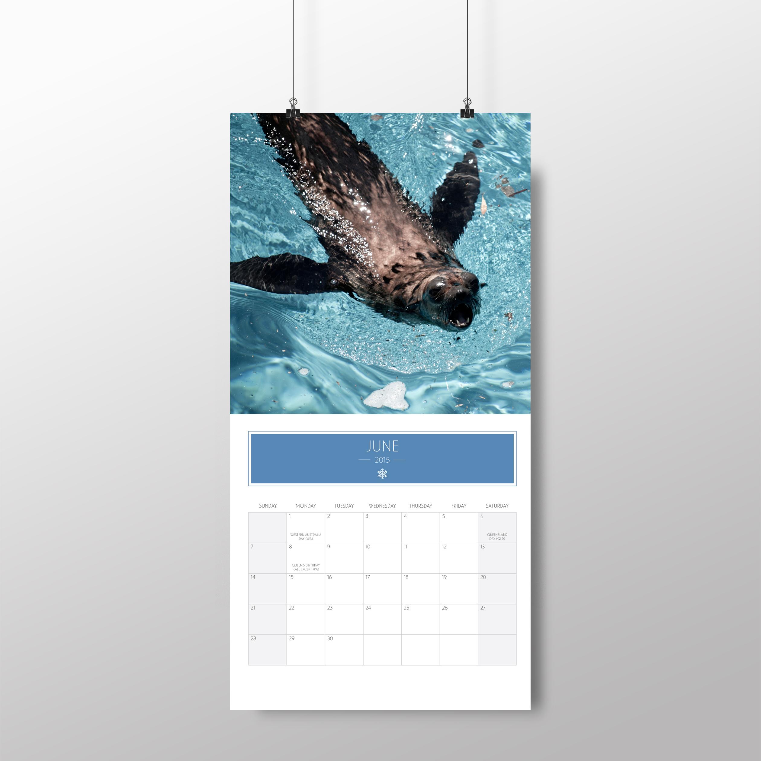 Animal calendar – June