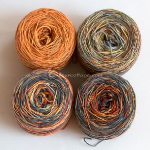Autumn sock yarn