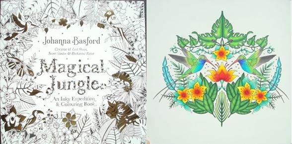 Magical Jungle An Inky Expedition And Colouring Book A