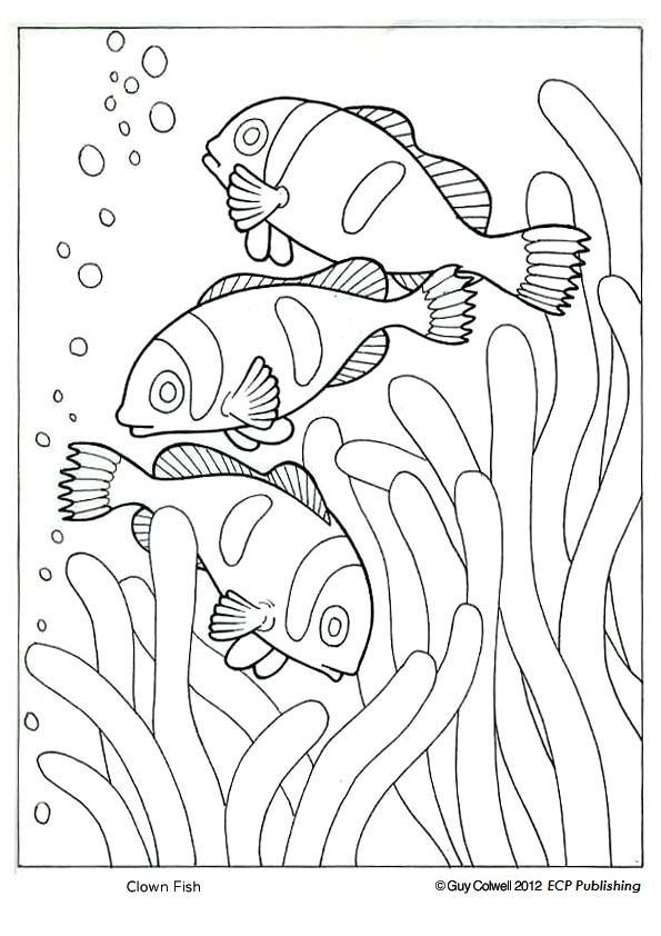 Clown Water Fish Coloring Page