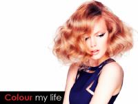 Hair Salon Specials Near Me | Colour My Life