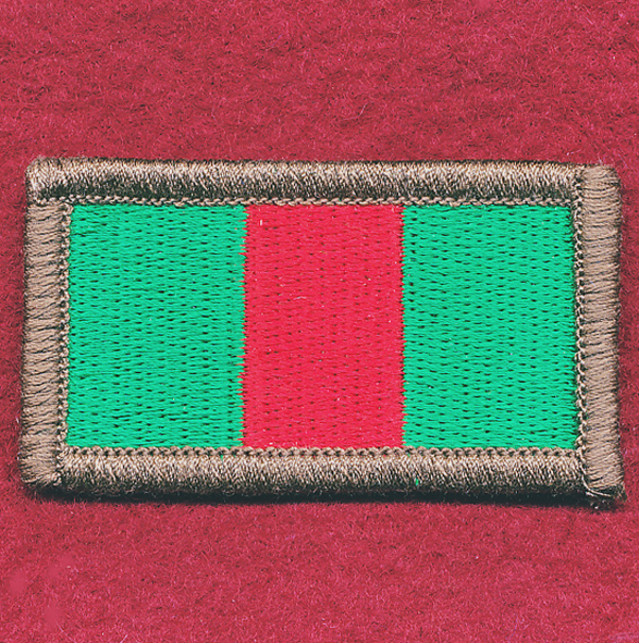 4th Battalion, The Royal Australian Regiment (Commando)