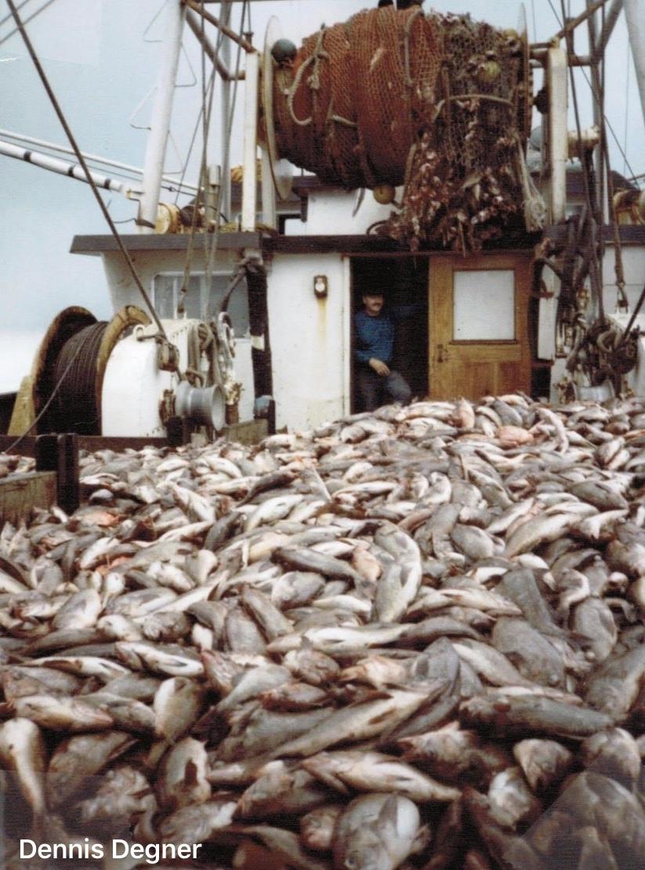 Fishing Industry Vessel