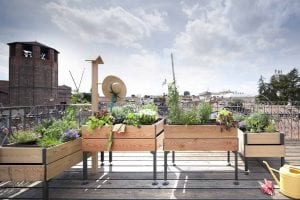 Orto sul balcone o sul terrazzo-Tavoli di coltivazione
